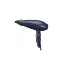 Sèche-cheveux Professional Record 3001